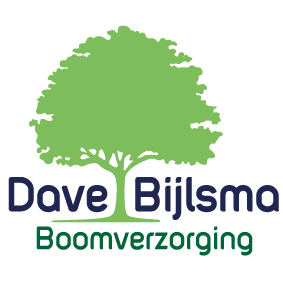 Logo_Dave_Bijlsma_Boomverzorging_Boomverzorger_Hilversum